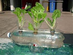 25 best ideas about cultivos hidroponicos on pinterest for 5 cultivos faciles para empezar un huerto en casa