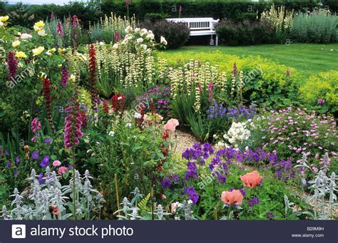 how to create a cottage garden border sussex country cottage garden in summer mixed borders either side of stock photo royalty free