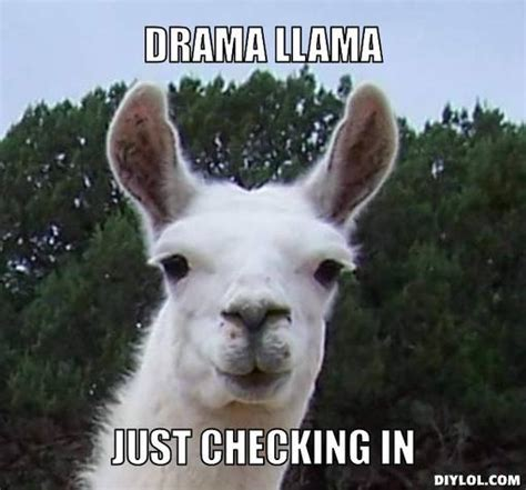 Drama Llama Meme - the sexiest am fr enduro hardtail thread please read the opening post page 2435 pinkbike forum