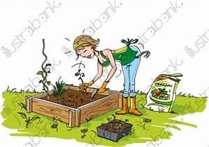 Jardin Dessin Couleur : femme et carr de jardin illustration autre libre de droit ~ Melissatoandfro.com Idées de Décoration