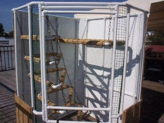 nice   dont    feel  pvc cages  prefer wood iggy cages iguana cage