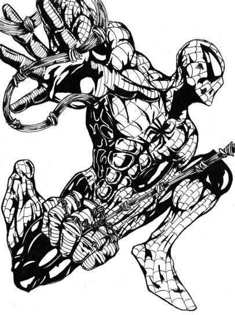 disegni  spiderman da colorare foto nanopress donna
