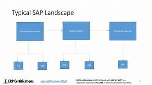 Sap Fi Organizational Structure