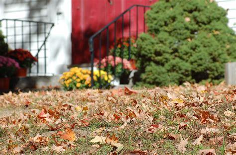 time  start raking leaves