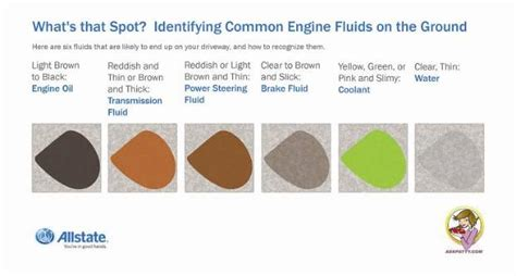 find  fluid identifying  cars drips