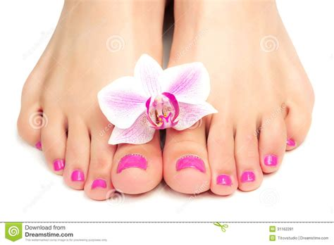 Pink Pedicure With A Orchid Flower Stock Image - Image