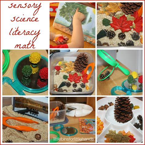 table activities for preschoolers fall activity discovery table preschool fall sensory play
