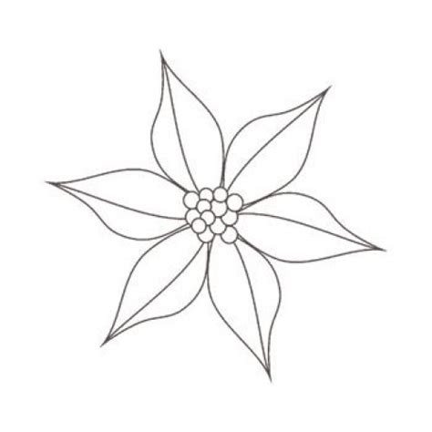 poinsettia drawing outline  getdrawings