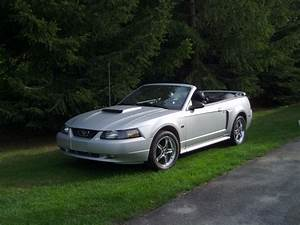 2003 Ford Mustang GT - $14 500 - Canadian Mustang Owners Club - Ford Mustang Forums