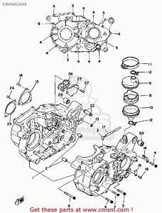 Yamaha Xt500 1981 Dual Purpose Usa Crankcase