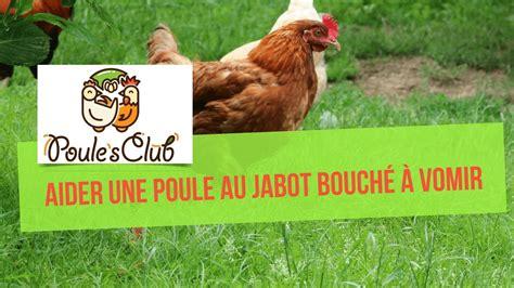 comment cuisiner une poule comment aider une poule au jabot bouch 233 224 vomir doovi