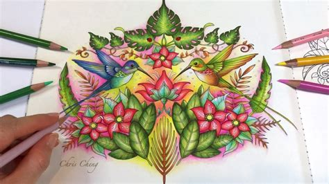 hummingbirds part  real time coloring magical