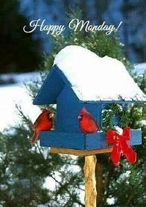 winter birdhouse monday quote pictures photos and images