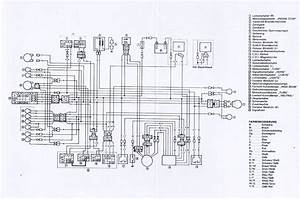 Yamaha Blaster Light Wiring