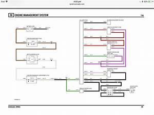 Cat 5 Wiring Diagram Td