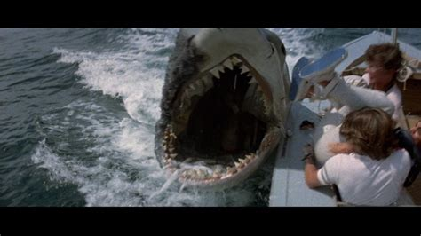 Jaws Boat Scars by The Colossus Of Rhodey Entertainment Archives