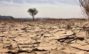 Famine in Kenya – DESERTIFICATION