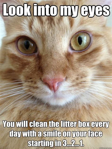 Author cleanmemesposted on july 1, 2019june 26, 2019categories cat memes, clean funny images, clean memes, dog memestags cat memes, clean funny images, clean memes, dog memes. Hypno Cat memes | quickmeme