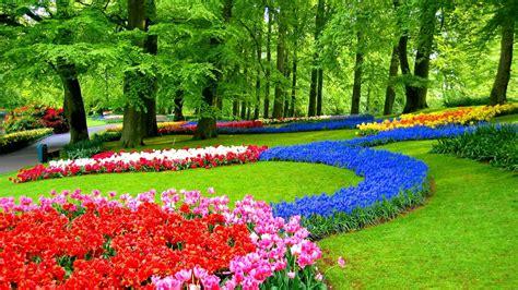 1920x1080 beautiful tulips garden jardins de keukenhof hd papier peint de bureau 233 cran large haute d 233 finition plein 233 cran