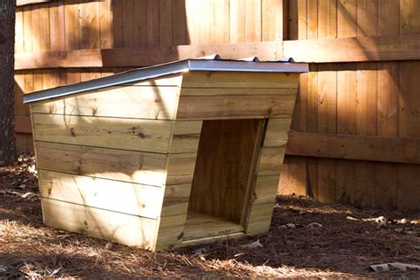 moderndog dog house tiny home builders