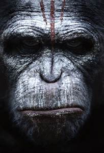 4 Posters of Dawn of the Planet of the Apes : Teaser Trailer