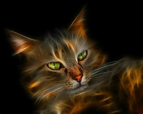 Cats Abstract Wallpapers Hd Photos & Images For Desktop