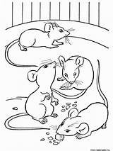 Mouse Coloring Pages sketch template