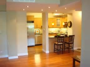 condo kitchen remodel ideas decorating condos gallery of images studio design gallery best design