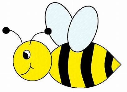 Bee Bumble Clipart Svg Bees Graphics Ruth