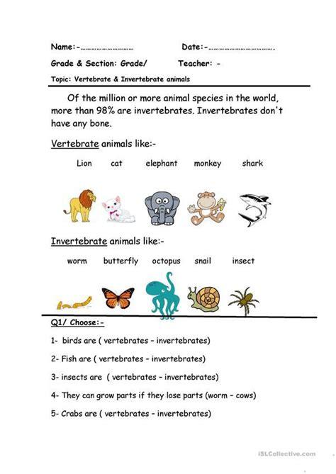 vertebrate invertebrate scienza