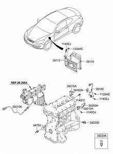 2011 Hyundai Genesis Coupe Parts Diagram