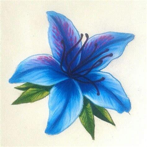 azalea azul  por natalia velez flower drawing