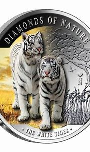 Image result for white and silver in nature | Coins ...