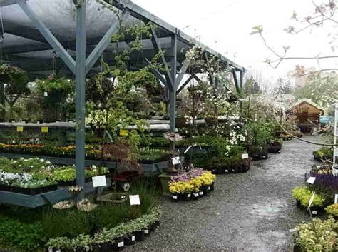 best 25 garden center displays ideas on