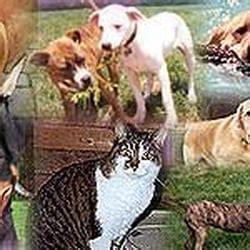 animal house huntley animal house shelter animal shelters huntley il
