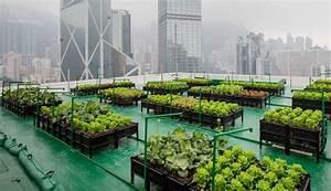 Urban Gardening Definition : natural capital coalition big data suggests big potential for urban farming ~ Eleganceandgraceweddings.com Haus und Dekorationen