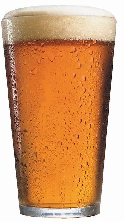 Beer Glass Clipart Mug Ale Clip Glasses