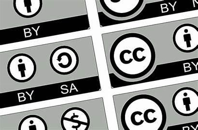 Creative Commons Pixabay Bildersuche Bildrechte Domain Ist