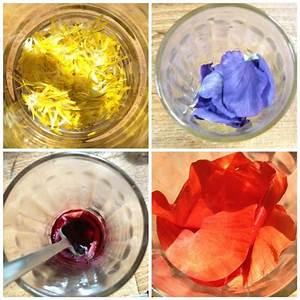 Comment Faire Du Rose En Peinture : comment faire du rose en peinture tuto comment avoir la ~ Melissatoandfro.com Idées de Décoration