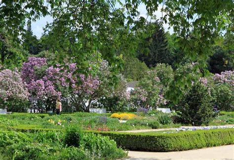 Botanischer Garten Und Botanisches Museum Berlin Dahlem Bgbm by Botanischer Garten Und Museum Berlin Wahrzeichen Berlin