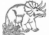 Coloring Dinosaurs Triceratops Printable Children Funny Justcolor sketch template