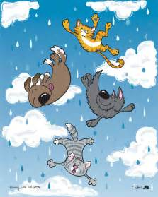 raining cats and dogs raining cats and dogs