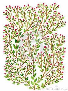 Busch Mit Roten Beeren : gr ner busch mit roten beeren stockbilder bild 35041454 ~ Markanthonyermac.com Haus und Dekorationen