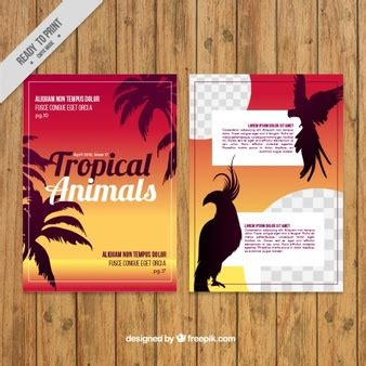 tropical wild templat tree savage vectors photos and psd files free download