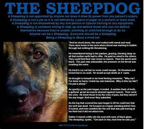 Sheepdog Police Wallpaper - WallpaperSafari