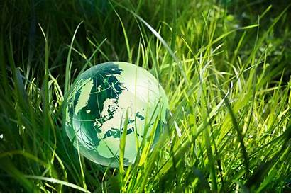 Sustainability Business Globe Grass Consulting