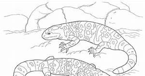 Gila Monster Page Coloring Pages