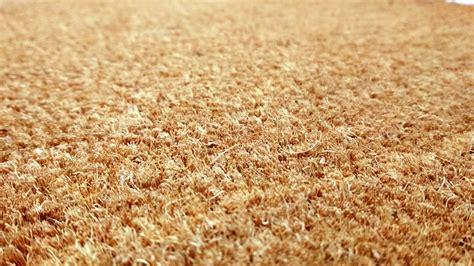zerbino cocco su misura zerbino cocco naturale cristina carpets