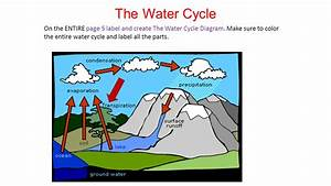Transpiration Definition Water Cycle