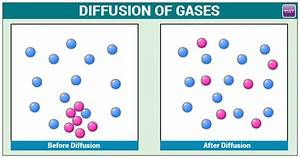Diffusion Of Gases   Important Concepts  Formulas And Examples